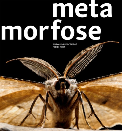capa_metamorfose